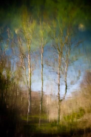 fotografo-naturaleza-y-paisajes-reflejos-jesusgpastor-1