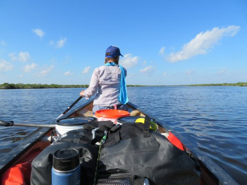 paddling in the everglades
