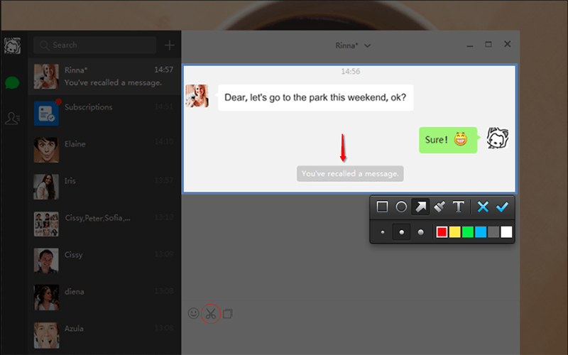 WeChat-Windows-Screen-Shot2