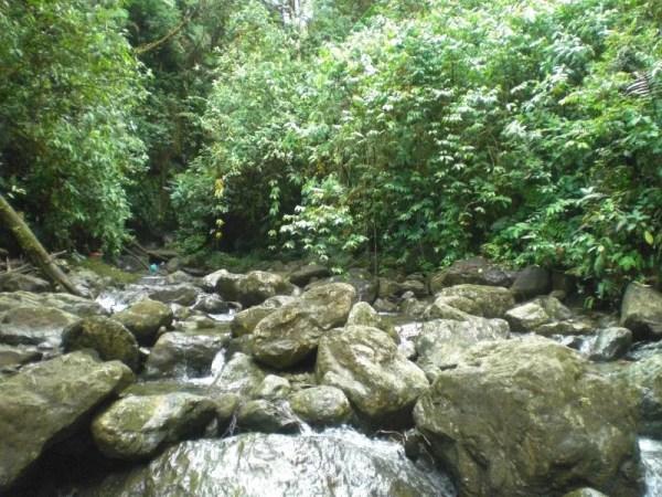 río arriba en busca de los primeros posos