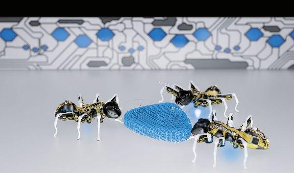 BionicANTs Hormigas inteligentes