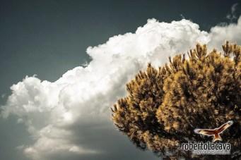 Tolve-Ugib-170911-0001