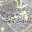 The Secret of Life: It goes on... until it doesn't