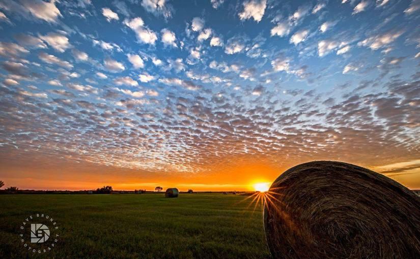 DAVE BRUNER: Photo Gallery — North Dakota Snapshots