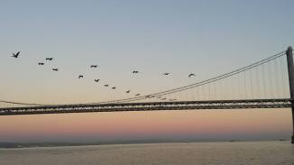 September 26: San Francisco's East Bay Bridge.