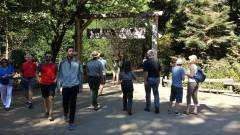Visitors at Muir Woods National Monument in Marin County.