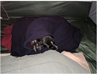 The temperatures dipped into the 40s, in the night so we snuggled Lizzie in our extra blankets inside the tent.