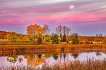 """Fall Morning Glory"": The Harvest Moon was setting in the early morning light as I set up to photograph the fall colors and the two geese in the the water. The early sun lit up the clouds in it's pink glow, which made for a colorful fall scene."