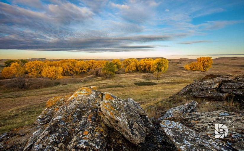 DAVE BRUNER: Photo Gallery — Fall Colors In Southwestern North Dakota