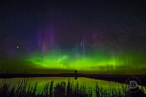 DAVE BRUNER: Photo Gallery — The Northern Lights Dancing In The Sky Above North Dakota