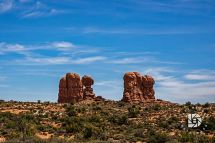 """Sheila named this formation """"Giants Feet."""" Does look like the toes of a giant sticking out of the sandy soil."""