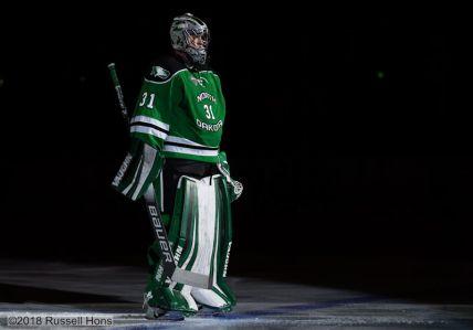 vegas hockey-112