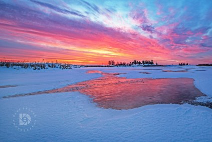 """""""Sunrise Ice Reflections"""": Got out this morning (Dec. 11) before sunrise to capture this beautiful sky that happened in the Grand Forks area."""