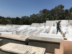 Jewish cemetery in Fez.