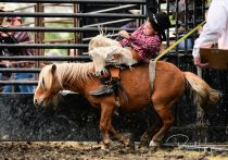 May 31, 2019 Wojo Rodeo at the Erskine, MN Water Carnival. Photo by Russell Hons All photos can be seen in the game album here: https://russellhonsphotography.shootproof.com/Wojo_Rodeo_2019