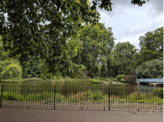 St. James Park, one of the many tranquil London parks. From here I could hear the band signaling The Changing of the Guard at nearby Buckingham Palace. My first view of the Palace hence was minutes away.