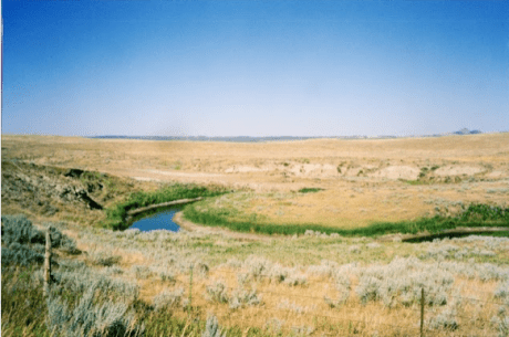 The headwaters of the Little Missouri River, Crook County, Wyo., the Little Missouri buttes on the right horizon.