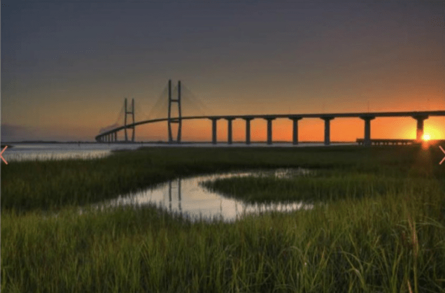 The Sidney Lanier Bridge is Georgia's tallest cable-stayed suspension bridge — 7,780 feet long and 486 feet tall. It took 95,283 cubic yards of concrete and 14,810,095 pounds of reinforcing steel to build it. (Georgia Department of Economic Development)