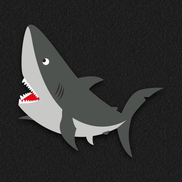 Shark New - Shark