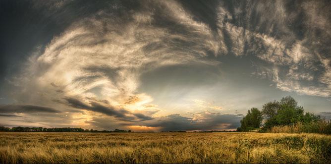 Színes természeti kép felhőkkel, mezővel, fákkal a végtelenséggel.
