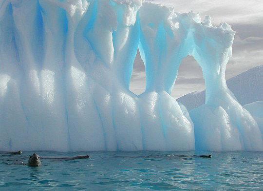 Sarki jég.