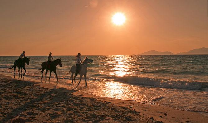 Lovagló emberek a tengerparti naplementében.