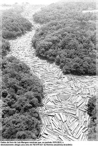 Dados do livro de Luiz Marques mostram que, no período 1970-2013, o desmatamento atingiu uma área de 762.979 km² da floresta amazônica brasileira