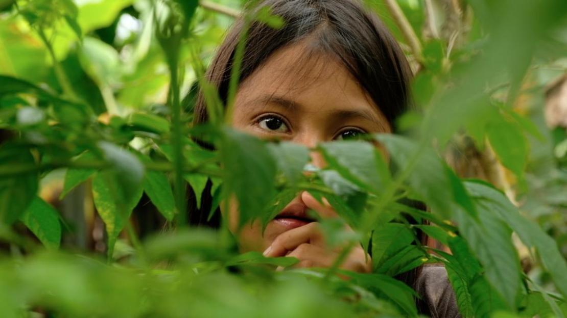 Ecuador. Una niña se esconde detrás de unas plantas.