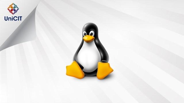 Introdução a Sistemas Linux