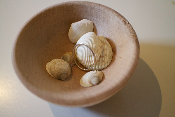 04 ring shells bowl