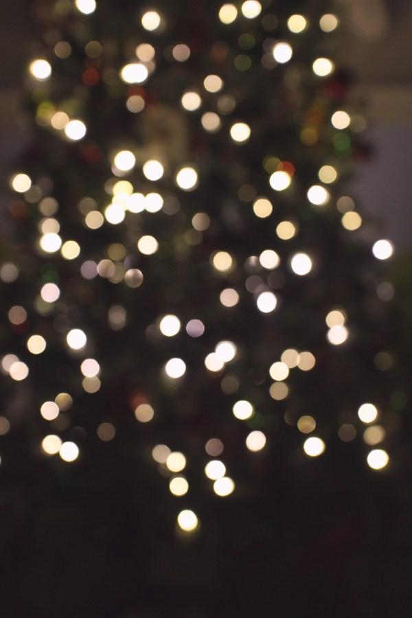02 eve tree