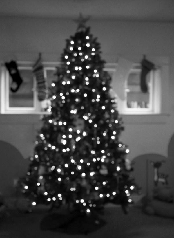 bw tree