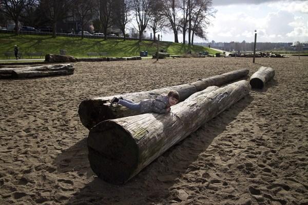 06 driftwood