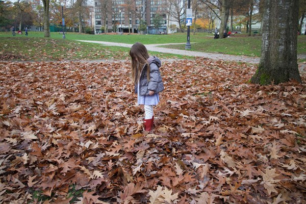 02-leaf-pile-gwen