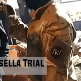 """Scarsella Trial – Part Two: """"In hindsight it was very stupid"""""""