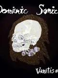 Dominic-Sonic-Guest-Nantes-concert