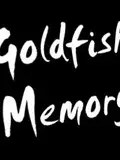 Goldfish-Memory-guest-Lille-concert