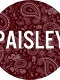 Paisley-Paris-concert