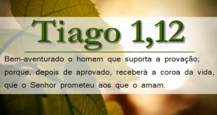 Papel de Parede Tiago 1 12