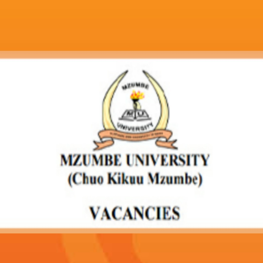 Mzumbe University 10 Job Opportunities March 2020