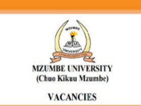 Mzumbe University 10 Job Opportunities March 2020