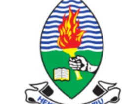 Lecturer & 2 Assistant Lecturer (UDBS) at University of Dar es Salaam August, 2020