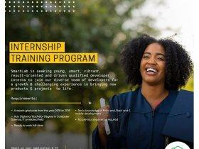 Internship Training Program At Smart Lab, June 2020