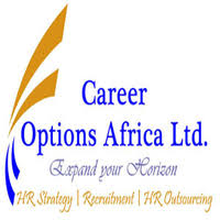 3 Job Vacancies At Career Options Africa
