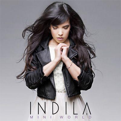 Indila-MiniWorldCover