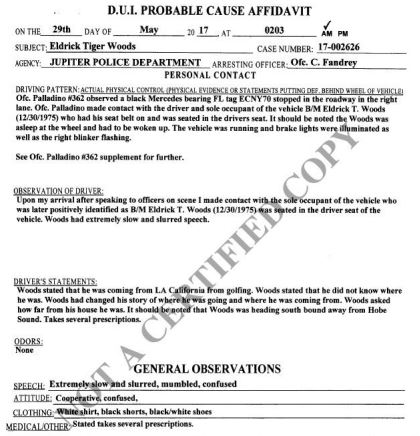 Tiger Woods Police Report Reveals State They Found Him In At Wheel Tiger2