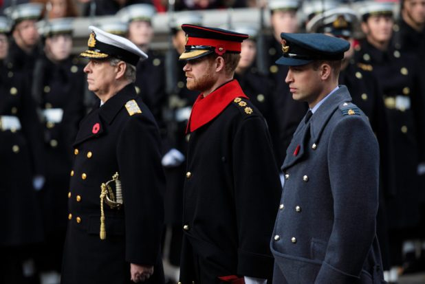 Prince Harry Breaks Huge Rule During Remembrance Day Parade Harry GettyImages 873174642 SMALL 1048x700