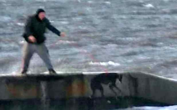 Man Filmed Repeatedly Throwing Greyhound Into Freezing Sea %name