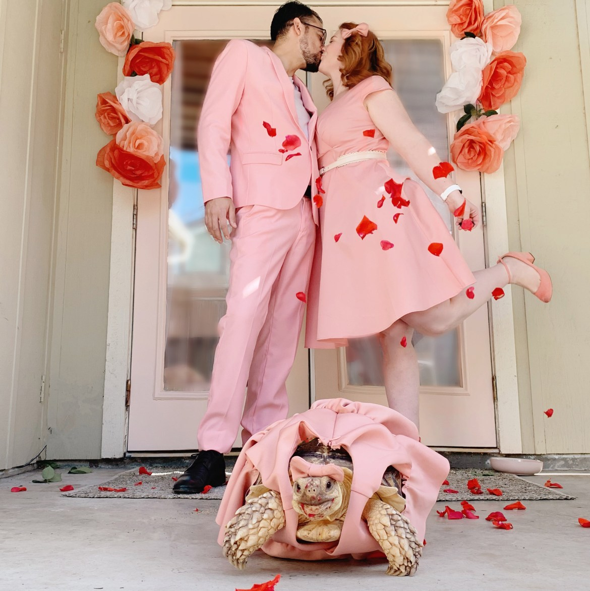 Couple dress their tortoise in matching pink formalwear