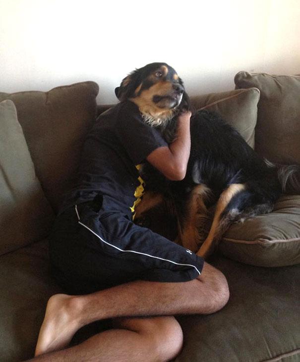 tam zamanında çekilmiş köpek temalı 30 fotoğraf